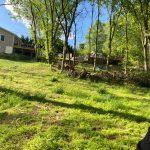 backyard excavation of overgrowth